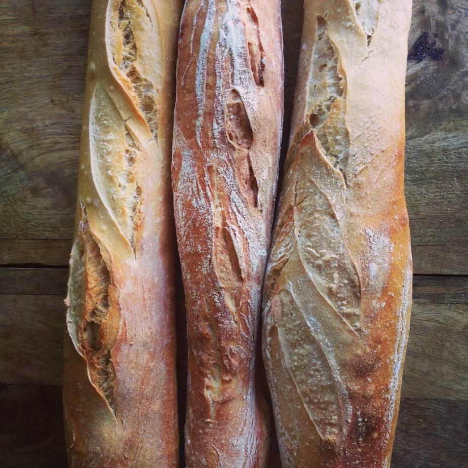 An introduction to bread making with CarlaTomasi