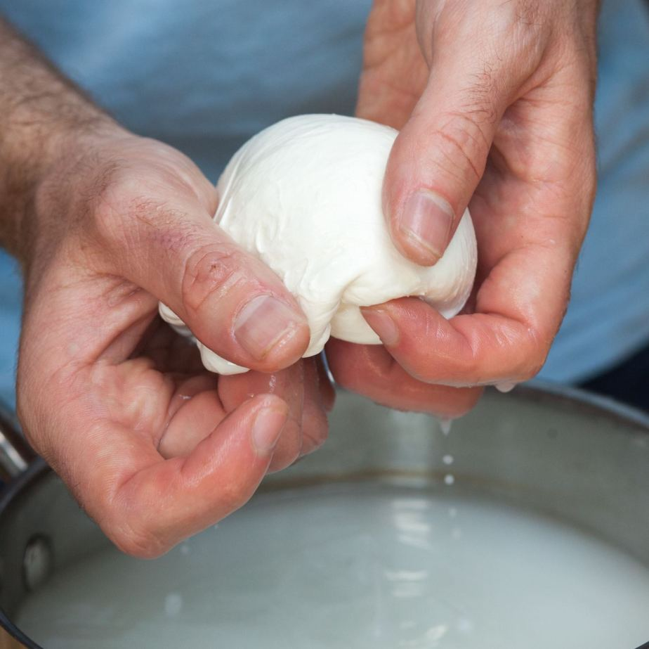 natural cheesemaking with David Asher, friday 4 november
